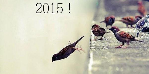 2015 : une année pour prendre des risques !